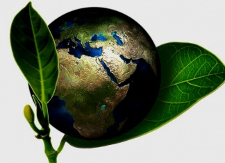 Cura della casa ed eco sostenibilità