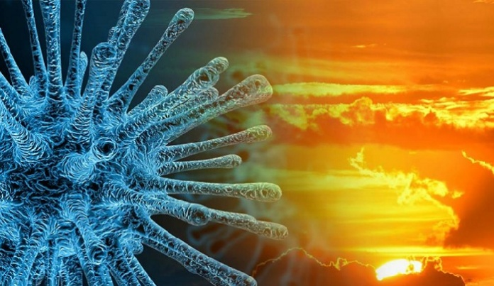 Coronavirus e Caldo