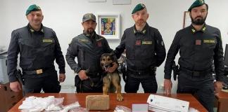 Droga bar ad Aversa: oltre due chili di cocaina e 6 mila euro in contanti nel retrobottega. Arrestato il titolare