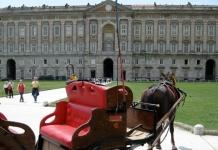 Cavallo morto nel Parco della Reggia di Caserta, l'intervento del sindaco Carlo Marino