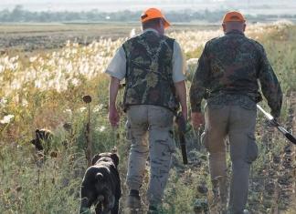 Come mai il cacciatore è l'unico soggetto autorizzato a circolare liberamente in zona rossa