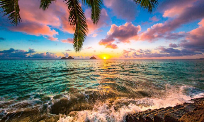 Smart working alle Hawaii, volo gratis e un'esperienza da sogno