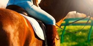 Istruttore di equitazione abusava di suoi allievi minori