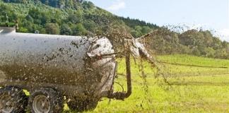 """Le piogge gonfiano le vasche di raccolta reflui negli allevamenti, S.O.S di Coldiretti Caserta a Regione e Provincia"""""""