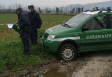Liquami zootecnici sparsi in campagna: sequestrato un allevamento ad Alvignano