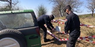 Disboscamento abusivo sul monte Tifata, intervengono i Carabinieri Forestale