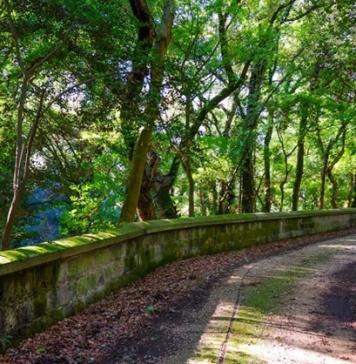 La poetica bellezza della natura dell'Oasi WWF di San Silvestro