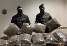 Droga, maxi sequestro a Santa Maria La Fossa: 300 chili di marijuana, pari a 3 milioni di euro, scovati in un capannone