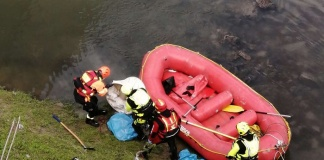 Capua, cane ucciso legato ad una fune con dei bilancieri di ferro e poi gettato nel fiume