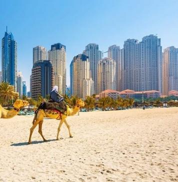 Approccio al mercato degli Emirati Arabi. Opportunità e criticità per le imprese del Casertano