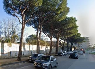 Caserta, Italia Nostra contro l'abbattimento degli alberi in via Unità Italiana