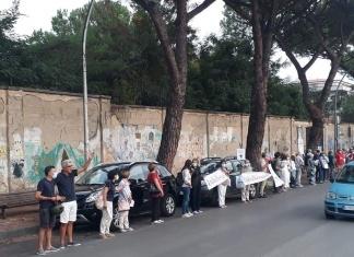 Caserta si mobilita con Italia Nostra contro l'abbattimento dei pini di Via Unità Italiana