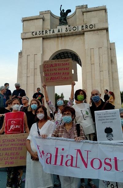 Caserta si mobilita con Italia Nostra contro l'abbattimento dei pini di Via Unità Italiana - Monumento ai Caduti